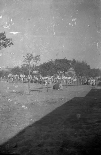 Asmara, 20 XII 1935.