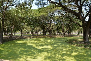 sukhothai - thailande 80