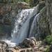 Moose Falls (Yellowstone National Park)