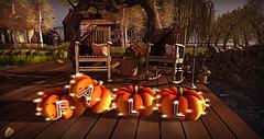 Style1555 (Kayshla Aristocrat) Tags: goose autumn fall cosmopolitan zencreations outdoorliving garden home homeandgarden decoration sl secondlife kayshlaaristocrat photography blog