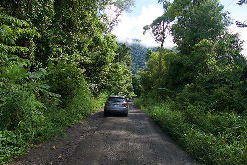 costa-rica-osa-thomas-trip10
