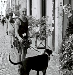 Walking the Dog in Rome