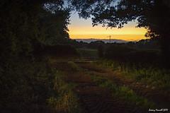 By the light of headlamps( Explored 11/09/2017) (zolaczakl) Tags: oldburyonsevern sunset countryside september nikond7100 nikonafsnikkor24120mmf4gedvrlens 2017 uk england southwest bristol trees explored