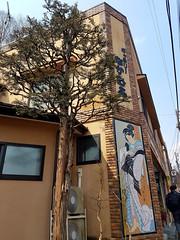 2017-03-19-11-21-44-Nikko_015 (Bavelso Habeji) Tags: