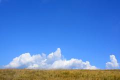 1PRO_6760 (Radu Pavel) Tags: radu pavel fotononstop cosmos radupavel ©radupavelallerechtevorbehalten ©radupaveltodoslosderechosreservados ©radupavelallrightsreserved munțiibucegi munțiicarpați românia carpathianmountains bucegimountains carpathians mountains landscape romania summer clouds trekking hiking ecotourism travel outdoor explore world earth nature peaceful serene bucegigebirge karpaten gebirge landschaft aussicht reisen rumänien wolken sommer wandern welt explorierung erde natur ökotourismus imfreien montes bucegi montescárpatos montañas rumania paisaje vista viaje nubes verano mundo exploración tierra natura alairelibre turismoecológico wallsofthoughtstrongandhigh sky himmel cielo 2017
