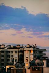 Harbinger (Melissa Maples) Tags: antalya turkey türkiye asia 土耳其 nikon d3300 ニコン 尼康 nikkor afs 18200mm f3556g 18200mmf3556g vr summer dawn morning sunrise building clouds reflection