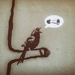 Tweets for Banksy (Thomas Hawk) Tags: america banksy california mission missiondistrict sanfrancisco usa unitedstates unitedstatesofamerica bird graffiti stencil fav10 fav25