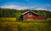 Barn in the Field [Explored 19.9.2017] (Topolino70) Tags: canon 600d barn lato field pelto countryside maaseutu summer nature outdoor kangasala finland