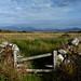 Countryside in Connemara (Nelleke C) Tags: 2016 letterdyvehouse rondstone connemara countryside countygalway holiday ierland ireland landscape landschap platteland vakantie