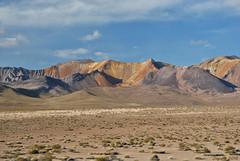 Minerals (Javiera C) Tags: chile arica parinacota parquenacional nationalpark naturaleza nature altiplano highlands desierto desert altura altitud puna paisaje landscape montaña mountain andes losandes color