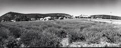 Provence 07 2017014 (Patrick.Raymond (3M views)) Tags: 04 haute provence valençole plateau lavande argentique mallefougasse lomography tmax horizon perfekt