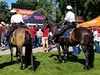Columbus Police Mounted Unit (Central Ohio Emergency Response) Tags: police ohio mounted horse columbus