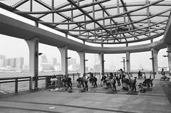 Yoga at the Pier (superzookeeper) Tags: eos1 analog film ilford hk hongkong ilforddelta100 delta100 canoneos1 ef2470mmf28liiusm monochrome blackandwhite eos bnw central pier yoga people over1000views pier9 street