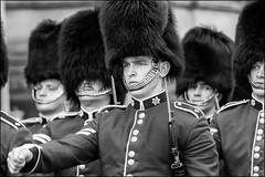 Change the Guard Faces (Dan Dewan) Tags: portrait canon7dmarkii street parliamenthill canon canonef7020014lusm hat male ottawa sunday wellingtonstreet august ontario dandewan bw blackandwhite 2017 man