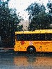 (ameraxi) Tags: تصويري تصوير bus rain photography photo iphone