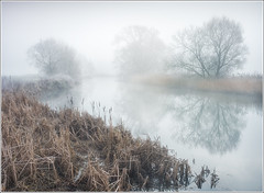 River mist (mistymornings99) Tags: mist panorama photostyles buscot landscape weather river thames