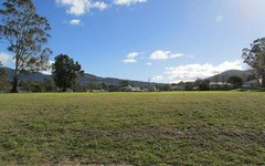 Lot 3 Rosedale Estate, Murrurundi NSW