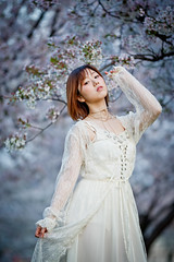 Portrait n Cherry Blossoms (Ilko Allexandroff / イルコ・光の魔術師) Tags: japan cherry blossoms 135mm natural light portrait sakura canon 1dx bokeh ポートレート ポートレート撮影 ambient