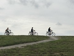(emed0s) Tags: bikes germany