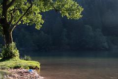 Le ballon oublié (martine_ferron) Tags: lac ballon soir contrejour arbre longemer vosges