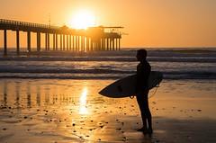 Living the California dream.jpg (Darren Berg) Tags: surf surfer waves board surfboard wetsuit silhouette pacific ocean wave reflection pier scripps san diego sandiego california dream orange