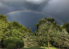 After the Storm (Jenny Onsager) Tags: rainbow storm clouds darksky potofgold trees blue green stormy