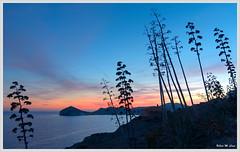 Puesta de sol en San José (Almería) (Jose Manuel Cano) Tags: almería sanjosé cabodegata españa spain mar sea agua water azul blue pita puestadesol sunset nikond5100