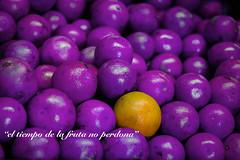 el tiempo de la fruta no perdona (rosatifamadelrio) Tags: fave30