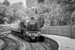 'ARRIVING PICKERING STATION' - 'LMS 'BLACK 5 No. 44806' (tonyfletcher) Tags: 44806 stanierblackfive nymr northyorkshiremoorsrailway tonyfletcher wwwtonyfletcherphotographycouk wwwwhitbygothscenecouk black5 460 stanierblackfive5mt460 pickeringstation