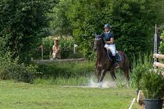 A9903725_s (AndiP66) Tags: springen derby aesch bl baselland 2017 juni june 13august2017 pferd horse schweiz switzerland kantonbaselland cantonofbaselland concours wettbewerb horsejumping springreiten pferdespringen equestrian sports pferdesport sport sony alpha sonyalpha 99markii 99ii 99m2 a99ii ilca99m2 slta99ii sony70400mm f456 sony70400mmf456gssmii sal70400g2 amount andreaspeters