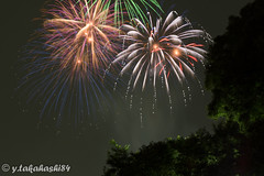 _IMG5948.jpg (y.takahashi84) Tags: hanabi fireworks 花火 さいたま urawa 浦和 東浦和 saitama 日本の夏 summer japan