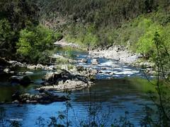 Rio Paiva (verridário) Tags: rio river paiva water nature naturaleza natureza agua sony ambiente paisagem landscape selvagem wild savage
