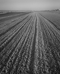 beach combing (sephrocker) Tags: beach iphonese lines blackandwhite mono monochromatic ocean shore sand summer