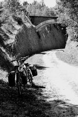 vélos au repos (daniellecherrier) Tags: voieverte cyclotourisme blackandwhite loisir bycyclette