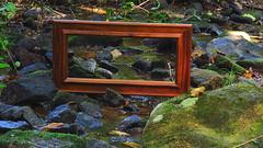 Flickr Friday: Mirror Mirror (Hayseed52) Tags: flickrfriday mirrormirror
