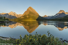 Alpen glow on Mt, Grinnell (greggohanian) Tags: glaciernationalpark manyglacier swiftcurrentlake mtgrinnell mountains montana reflection calm stillness wildflowers nikond800 nikon20mmf18 alpenglow