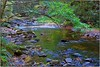 Laurel Falls stream (Steve4343) Tags: nikon d70s green stream river creek water laurel falls hampton tennessee steve4343