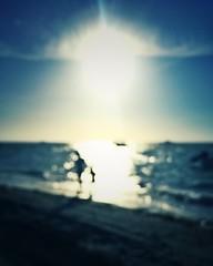 Long summer days (Mister Blur) Tags: long summer days chicxulub beach yucatán méxico blur scene silhouettes iphone se iphoneography snapseed