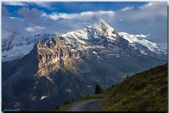 Eiger, Jungfrau et Silberhorn - depuis sentier du Bachalpsee (jamesreed68) Tags: eiger ogre mountain sommet summit nature suisse oberland bernois grindenwald canon eos 600d jungfrau silberhorn altitude