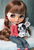 New bulldog puppy. (Fenekdolls) Tags: blythe doll toys bulldog puppy wool felting