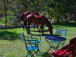 hotel's lawn mowers 😄😄 hotel Agriani..Xanthi Greece