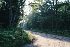 (DhkZ) Tags: road countryroad dirtroad ontario candada lakeofbays baysville muskoka morning mist sun stopsign canoneos5d2 contax zeiss distagont1435 nature