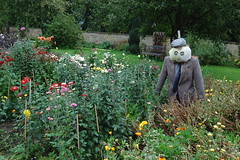 Canons Ashby - 3 (basswulf) Tags: garden scarecrow d40 1855mmf3556g lenstagged unmodified 32 image:ratio=32 permissions:licence=c 20170925 201709 3008x2000 canonsashby nationaltrust northamptonshire england uk