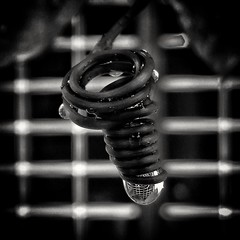 The growth of understanding follows an ascending spiral rather than a straight line. (abhishekskumar) Tags: water droplet sacredgeometry geometry vine spiral ascending waterdrop spirals line circle monochrome blackandwhite