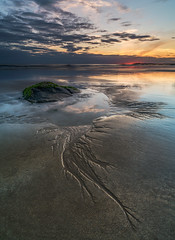 'Capillaries' - Porth Tyn Tywyn, Anglesey (Kristofer Williams) Tags: beach coast sea rhosneigr porthtyntywyn anglesey wales evening landscape sunset rockpool pool water