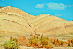 THE DESERT LIVES (Irene2727) Tags: desert california deathvalley hills mountain colors brush plants bushes sand blue landscape scape pano panorama