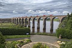 800101 (Geoff Griffiths Doncaster) Tags: 800101 virgin berwick royal border bridge tweed east coast azuma hitachi high speed new