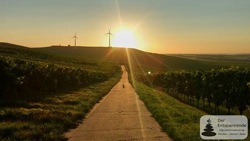 SunriseRun über dem Selztal