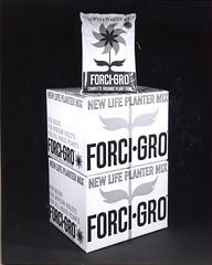 FORCI-GRO Packaging Graphics - Designer Chuck Barnard - 1961 (hmdavid) Tags: forcigro packaging graphics flower logo 1960s midcentury design chuckbarnard idmagazine industrialdesign vintage fertilizer scott mod