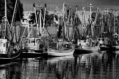 Feierabend (Gabi Wi) Tags: monochrome fischerboote fishingboats hafen harbor greetsiel ostfriesland germany krabbenkutter shrimpboats nordsee